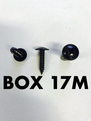 Carclips Box 17M 10g x 20mm Screws
