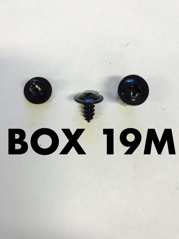 Carclips Box 19M 10g x 10mm Screws