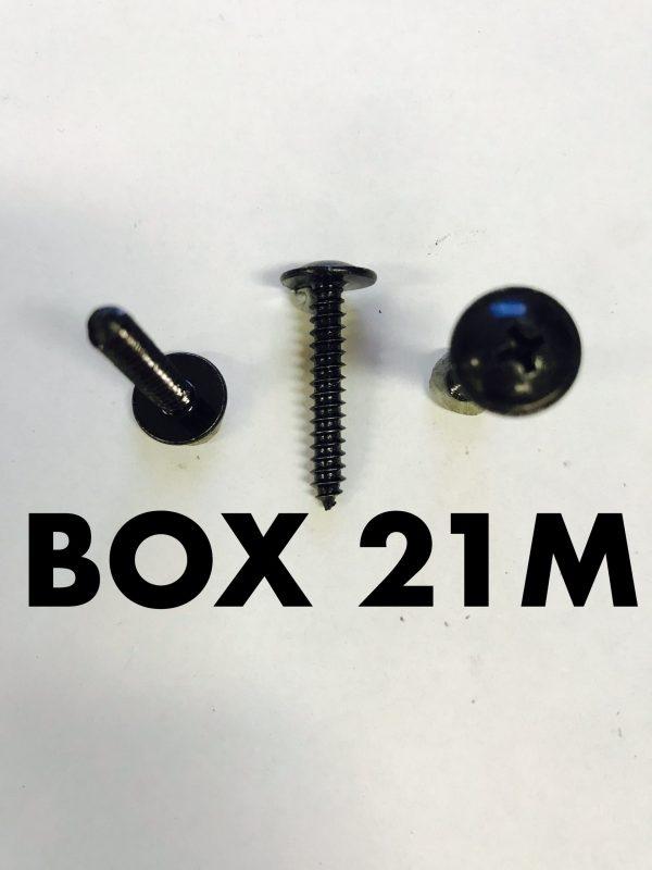 Carclips Box 21M 8g x 25mm Screws