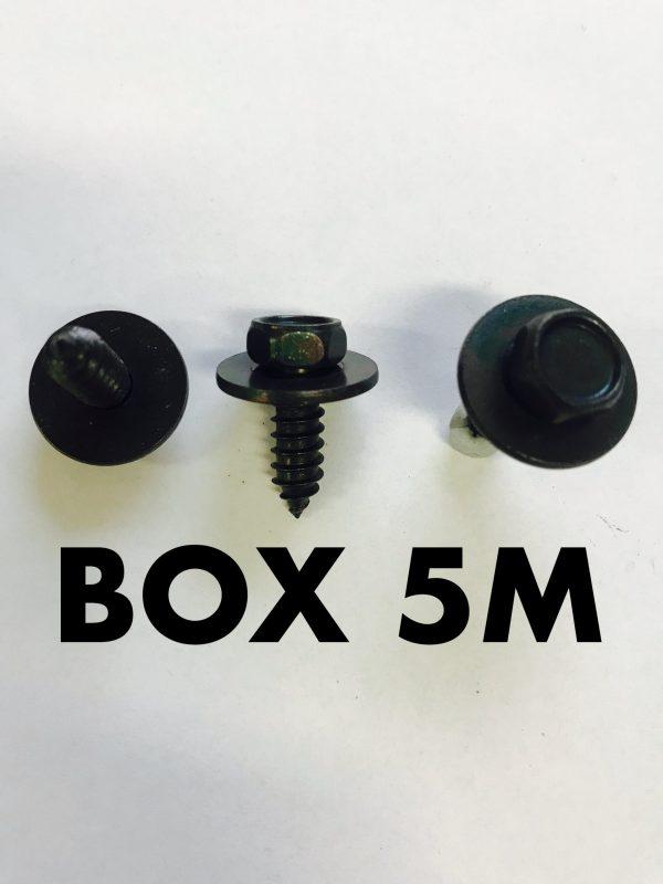 Carclips Box 5M M6 Screw Black